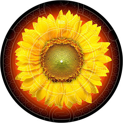 Glowtronics 12 in. Sunflower Glow-in-the-Dark DJ Slipmats