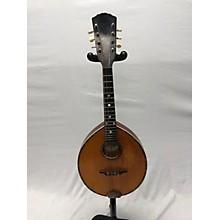 Gibson 1910s Alrite Mandolin Mandolin