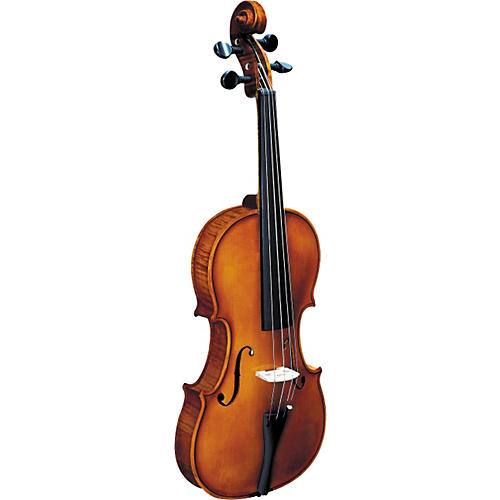 Strunal 193W BH Concert Violin Outfit
