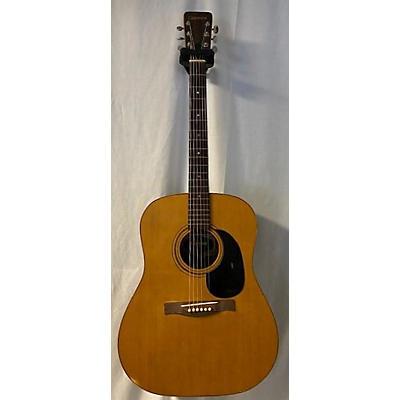 Giannini 1974 AW570 Acoustic Guitar