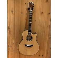 Taylor 2009 GS Custom Acoustic Electric Guitar
