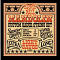 Ernie Ball 2323 Light Mandolin Strings thumbnail