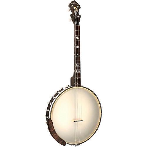 Gold Tone 4-String Irish Tenor Openback Banjo with 17 Frets