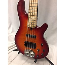 Lakland 55-02 Skyline Series 5 String---