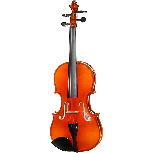 Meisel 6120A Series 4/4 Violin Outfit