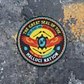 Alliance A Tribe Called Red - We Are The Halluci Nation thumbnail