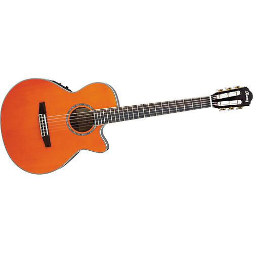 ibanez aeg10ne nylon string cutaway acoustic electric guitar musician 39 s friend. Black Bedroom Furniture Sets. Home Design Ideas