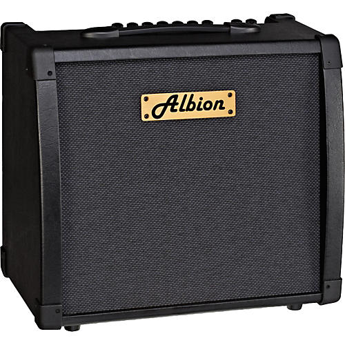 Albion Amplification AG Series AG40DFX 40W Guitar Combo Amp