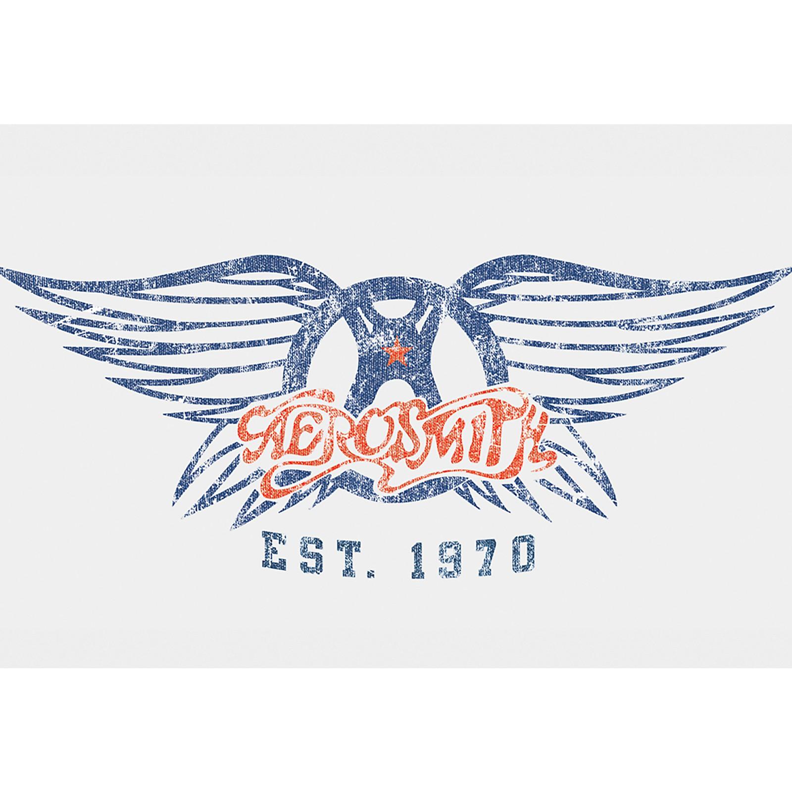 C&D Visionary Aerosmith Est. 1970 Magnet