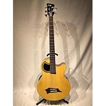RockBass by Warwick Alien 5 Acoustic Bass Guitar