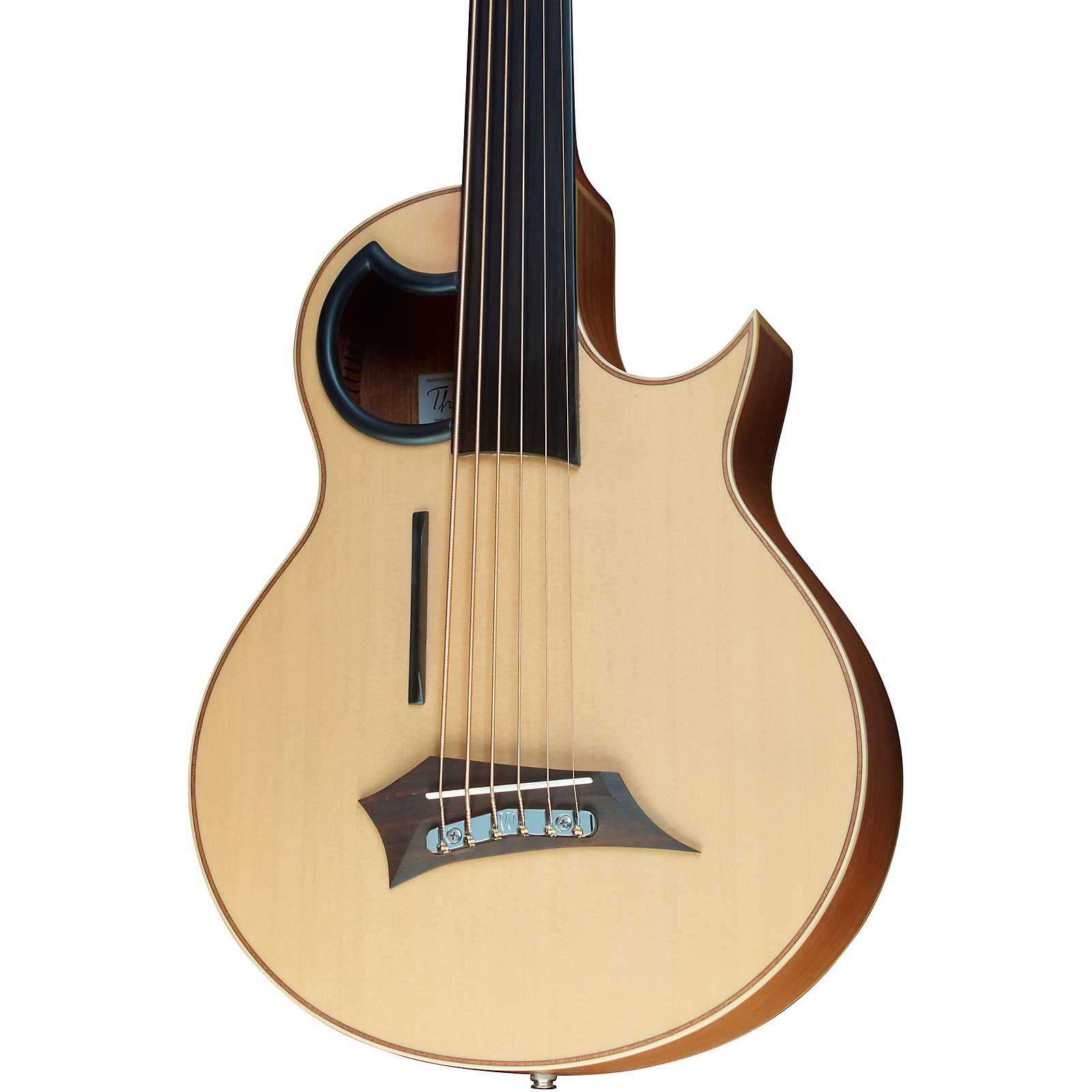 Warwick Alien 6-String Fretless Acoustic-Electric Bass