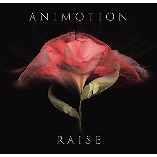 Alliance Animotion - Raise Your Expectations