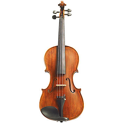Stentor Arcadia Series Violin Outfit