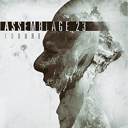 Alliance Assemblage 23 - Endure