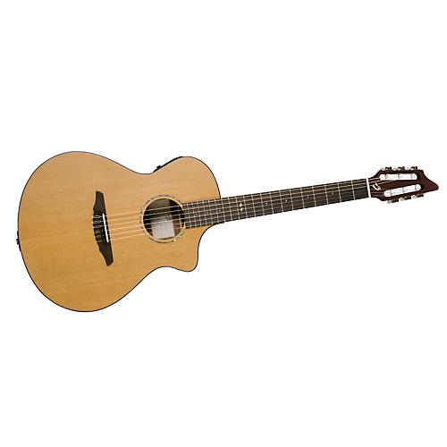 Breedlove Atlas Studio N250/CRe Nylon Acoustic-Electric Guitar