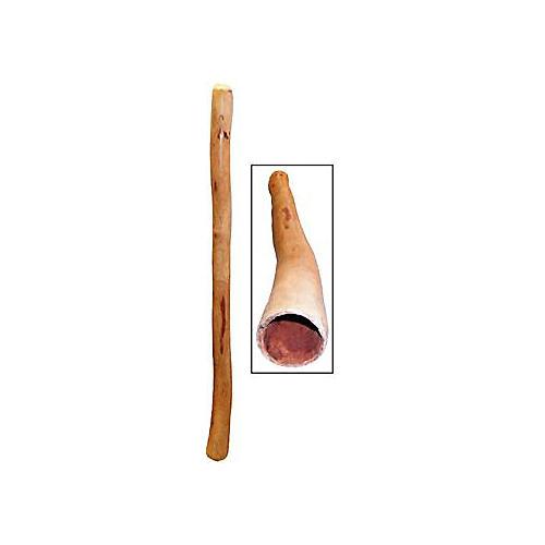 Didgeridoo Store Authentic Australian Eucalyptus Didgeridoo