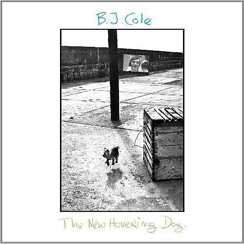Alliance B.J. Cole - New Hovering Dog