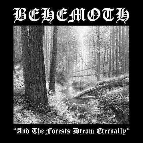 Alliance Behemoth - & the Forests Dream Eternally