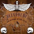 Alliance Belvedere - Revenge Of The Fifth thumbnail