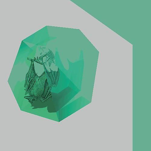 Alliance Bichkraft - Shadoof