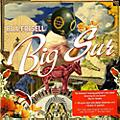 Alliance Bill Frisell - Big Sur thumbnail