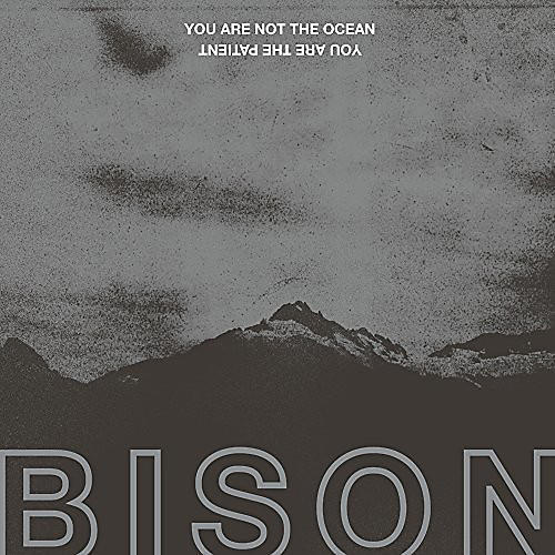Alliance Bison - You Are Not The Ocean You Are The Patient
