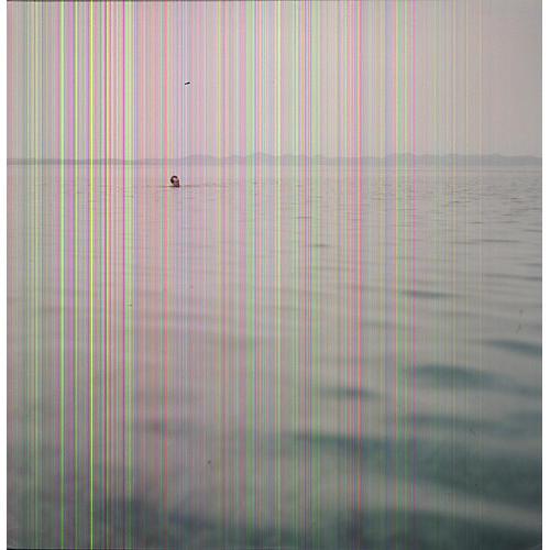 Alliance Blue Cranes - Swim