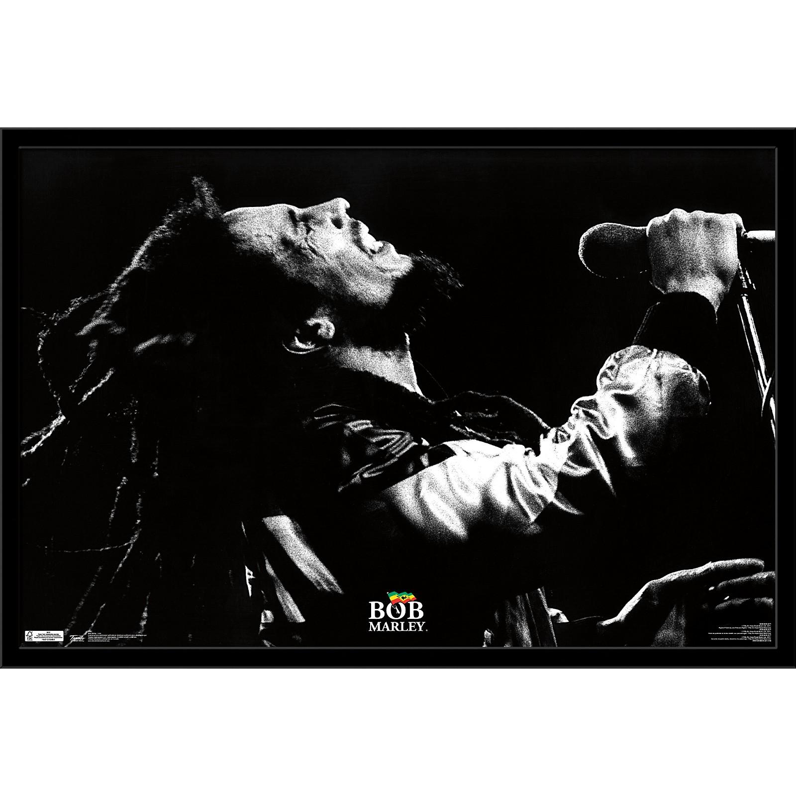 Trends International Bob Marley - Live Poster