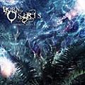 Alliance Born of Osiris - Tomorrow We Die Alive thumbnail