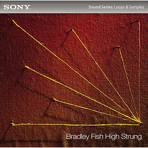 Sony Bradley Fish: High Strung
