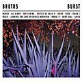 Alliance Brutus - Burst thumbnail