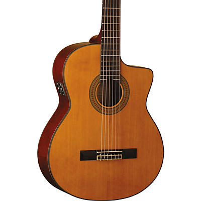 Washburn C64SCE-A Classical Acoustic-Electric Guitar