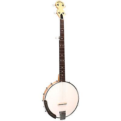 Gold Tone CC-100 (O) Open Back Banjo