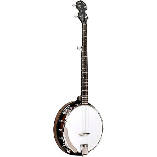 Gold Tone CC-BG Cripple Creek Banjo Bluegrass Starter Pack Vintage Brown