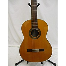 Miscellaneous CG Classical Acoustic Guitar