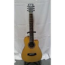 Traveler Guitar CS10 Acoustic Guitar