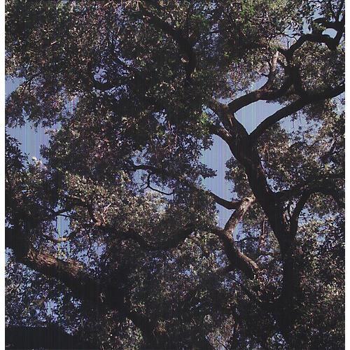 Alliance Charles Manson - Trees