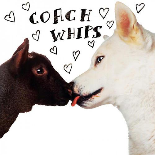 Alliance Coachwhips - Bangers Vs. Fuckers