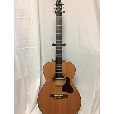 Seagull Coastline CH MOMENTUM HG Acoustic Electric Guitar