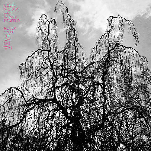 Alliance Colin Stetson - Never Were the Way She Was