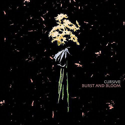 Alliance Cursive - Burst and Bloom