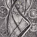 Alliance Cynic - Uroboric Forms: The Complete Demo Recordings thumbnail