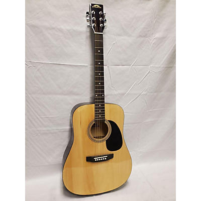 Stadium D-42 Acoustic Guitar