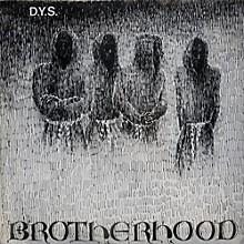 D.Y.S. - Brotherhood