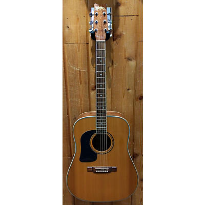 Washburn D10SLH Acoustic Guitar