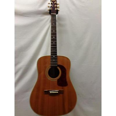 Washburn D21sn Acoustic Guitar