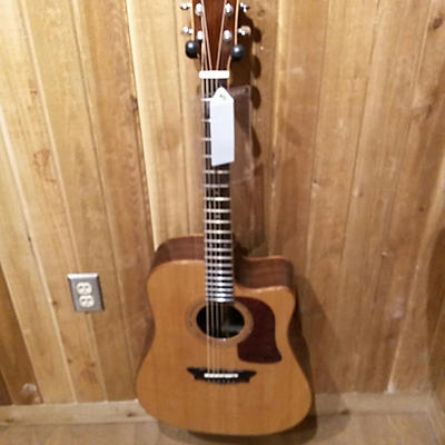Washburn D56SWCE Acoustic Electric Guitar