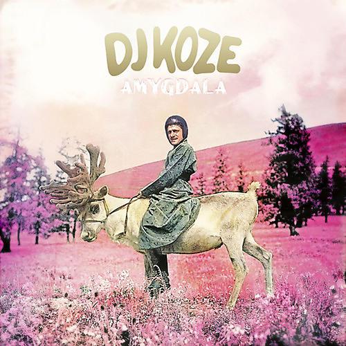Alliance DJ Koze - Amygdala