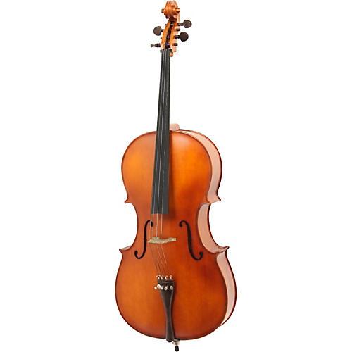 The String Centre DSC Cello Model 1 4/4