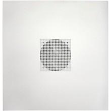 Atlas Sound DT22 2' x 2' Drop Tile Loudspeaker Package